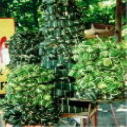 Món ngon xứ biển Nha Trang - Khánh Hòa