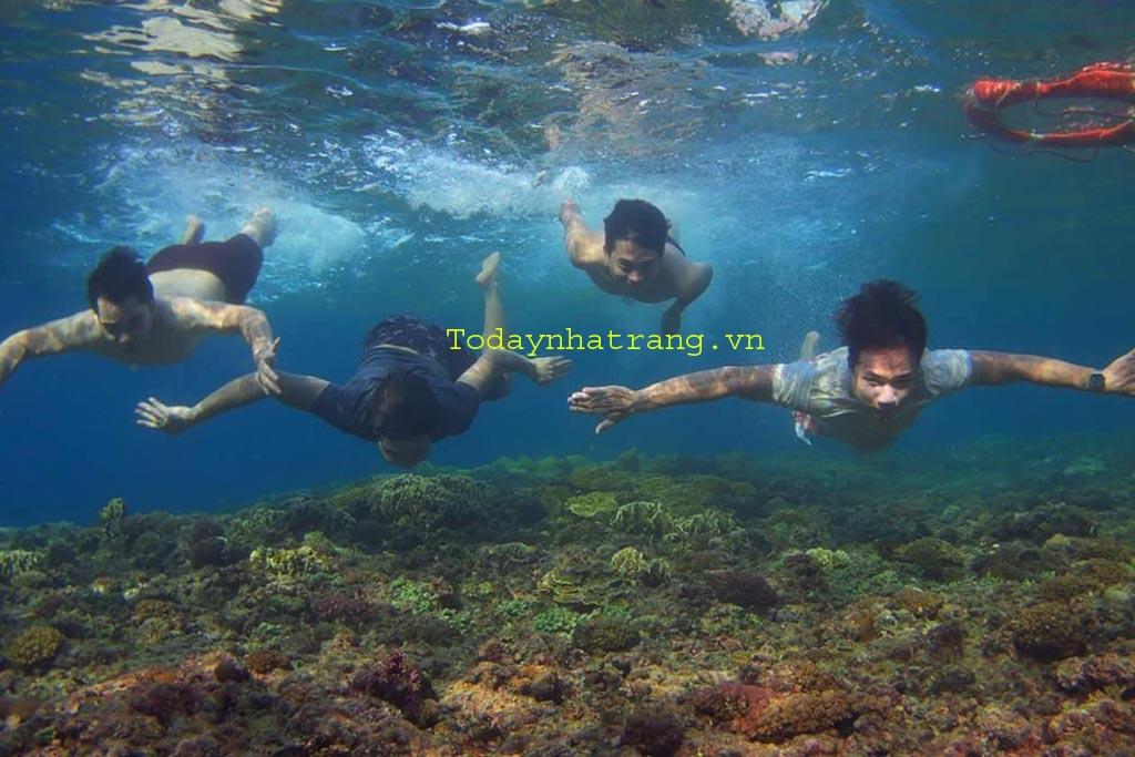 www.123nhanh.com: Tour Bình Ba Nha Trang trọn gói 550.000 đ